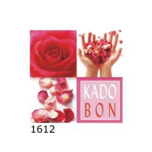 Kadobon Algemeen Rozen – 12 stuks