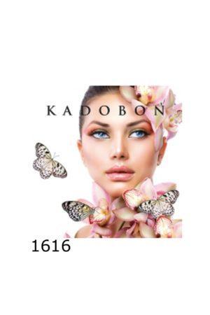 1616 1 300x450 - Kadobon Butterflies - 12 stuks - kadobonnen